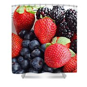 Three Fruit - Strawberries - Blueberries - Blackberries Shower Curtain by Barbara Griffin