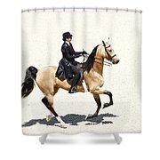 Three Gaited Buckskin Shower Curtain
