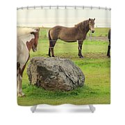 There Were Three Horsegirls And One Big Gray Stone  Shower Curtain