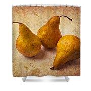 Three Golden Pears Shower Curtain