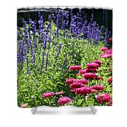 Three Great Colors Shower Curtain