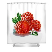 Three Happy Raspberries Shower Curtain