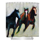 Three Horses On The Diagonal Shower Curtain