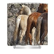 Three Long Tails Shower Curtain
