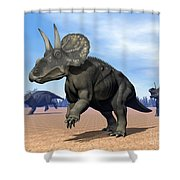 Three Nedoceratops In The Desert Shower Curtain