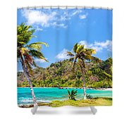 Three Palm Trees In Panama Shower Curtain
