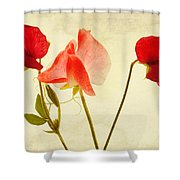 Three Peas No Pod Shower Curtain by John Edwards