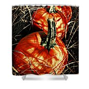 Three Pumpkins Shower Curtain