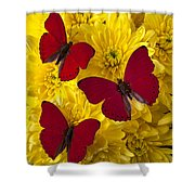 Three Red Butterflys Shower Curtain