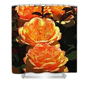 Four Rose At Mcc Shower Curtain