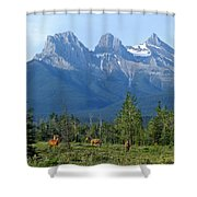 1m3203-three Sisters Faith Hope Charity Shower Curtain