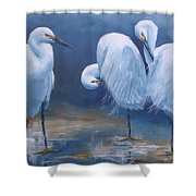 Three Snowy Egrets Shower Curtain