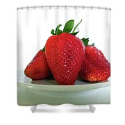 Three Strawberries Shower Curtain