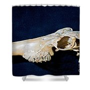 Three Toed Slingshot Shower Curtain