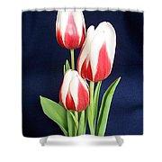 Three Tulips Shower Curtain