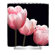 Three Two Lips Shower Curtain