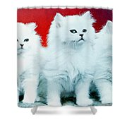 Three White Cats Shower Curtain