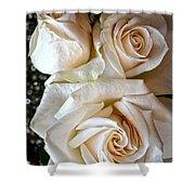 Three White Roses Shower Curtain