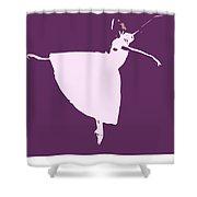 Three Wishes For Cinderella Shower Curtain