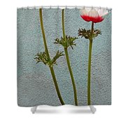 Three Wishes For The New Year Shower Curtain