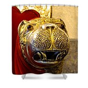Throne Detail Udaipur City Palace India Shower Curtain