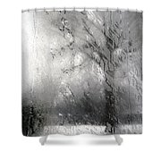 Through Glass -- A Tree In Winter Shower Curtain