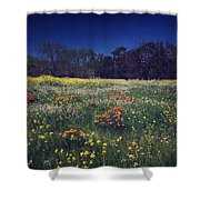 Through The Blooming Fields Shower Curtain