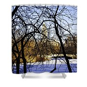 Through The Branches 3 - Central Park - Nyc Shower Curtain