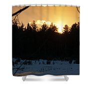 Through The Branches Shower Curtain