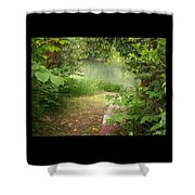 Through The Forest At Water's Edge Shower Curtain