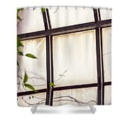 Through The Glass Shower Curtain
