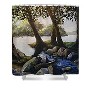 Through The Trees Shower Curtain by Don Perino