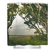 Through The Twisty Trees Shower Curtain