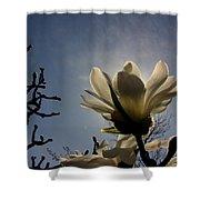 Thru The Flowers 2 Shower Curtain