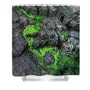 Thunder Hole Algae Shower Curtain