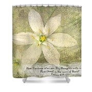 Thy Thoughts Shower Curtain