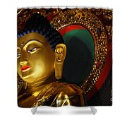 Tibetan Buddha 8 Shower Curtain