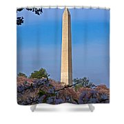 Tidal Basin Cherry Blossoms #2 Shower Curtain
