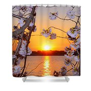 Tidal Basin Sunset With Cherry Blossoms Shower Curtain