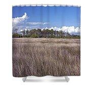 Tidal Marsh On Roanoke Island Shower Curtain