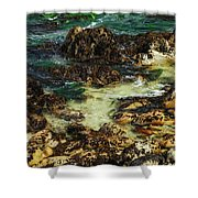 Tidal Pools Shower Curtain
