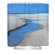 Tidal Pools Shower Curtain by Susan Leggett