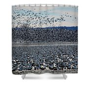 Tidal Wave Of Geese Shower Curtain