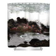 Tide Pool  Shower Curtain