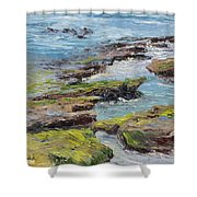 Tide Pools Revealed   Cardiff Shower Curtain