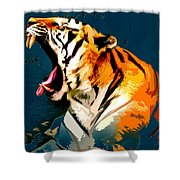 Tiger 002 Shower Curtain