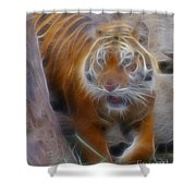 Tiger-5362-fractal Shower Curtain