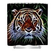 Tiger Abstact Art Shower Curtain