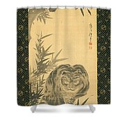 Tiger And Bamboo Shower Curtain
