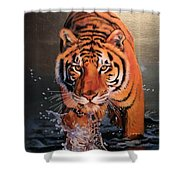 Tiger Crossing Water Shower Curtain